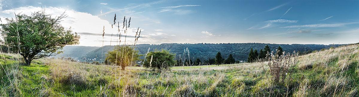 photo panoramique tourisme lorraine retouche montage photo