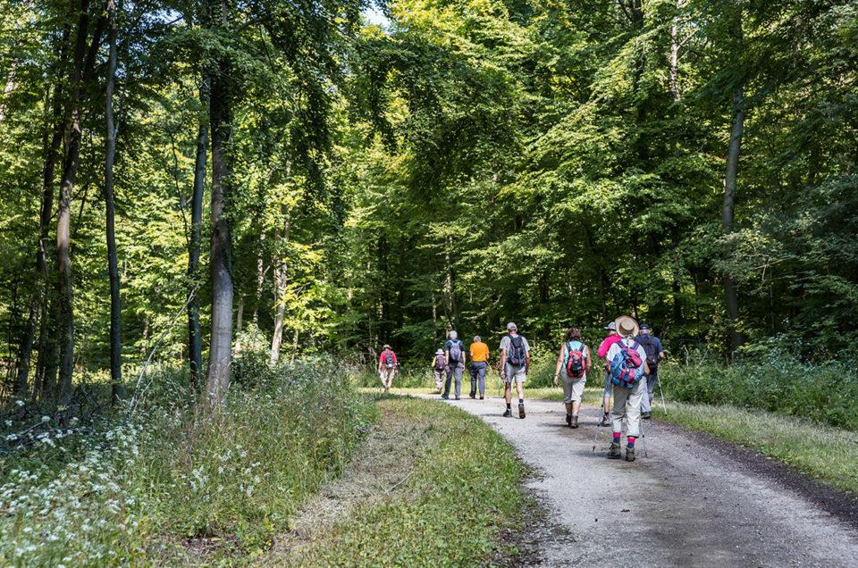 Images d'illustrations pour le tourisme dans le Val de Fensch
